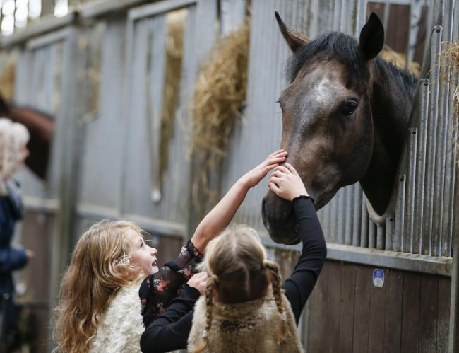 Twins Darcy and Amber Rowsell meet the horses at Richard Fahey yard at a previous Malton Stables Open Day   Picture: Louise Pollard