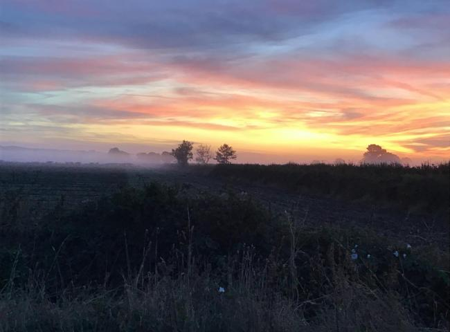 Sunrise over Marishes near Malton    Picture: Dee Briggs