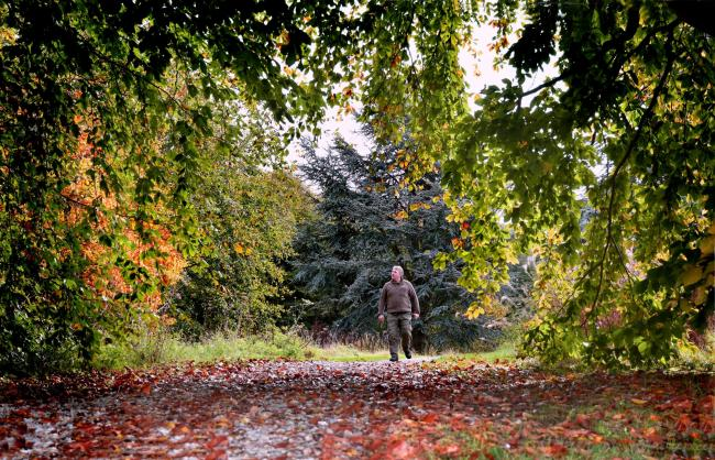 Yorkshire Arboretum is getting ready to reopen to the public     Picture: Frank Dwyer