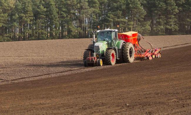 There is a huge variation from farm-to-farm on winter crops being planted