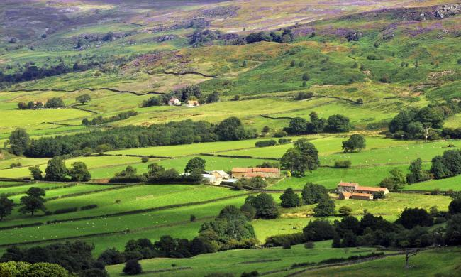 Farmers are being urged to have their say on a new land scheme on the North York Moors