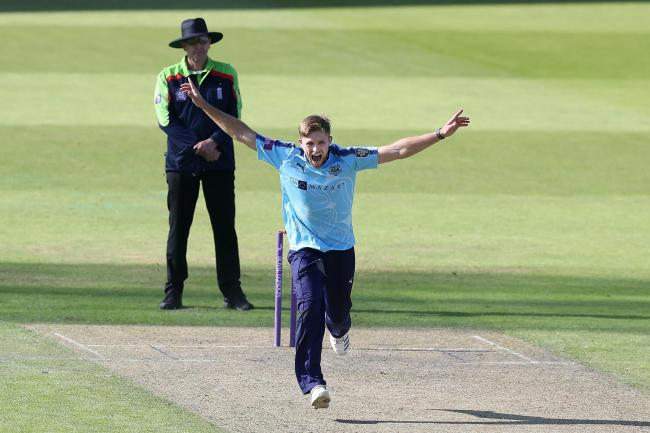 David Willey is among four Yorkshire players self-isolating