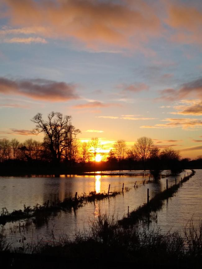 Sun reflected in flood waters by Mike Potter