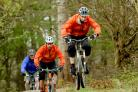 2012 Olympics spark mountain biking interest in Dalby Forest