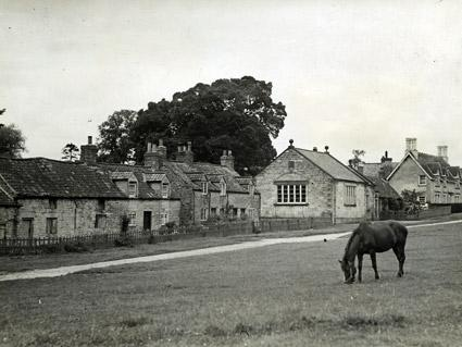 A horse grazes in the village of Coneysthorpe.