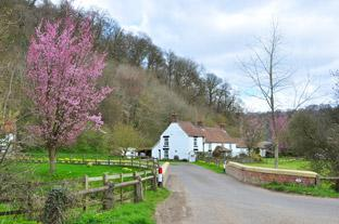 Gazette & Herald: Ashberry Farm is along the way to Caydale Mill