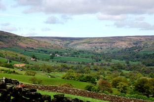 Gazette & Herald: The view across Farndale to the moors where Jenny Bradley probably roamed