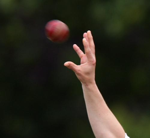 Senior Cricket League: Leaders Osbaldwick send Sheriff Hutton packing