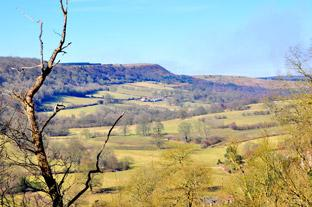 Gazette & Herald: Beautiful Sleightholme Dale emerging from winter,