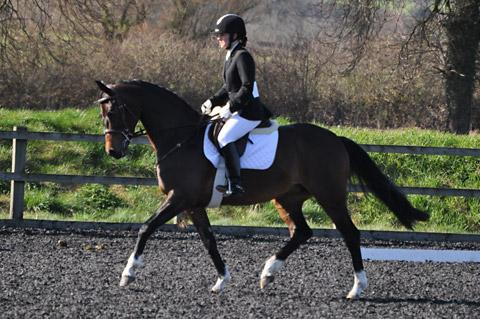 Gazette & Herald: The winners of the novice level test, Nicola Clayton and Baronette