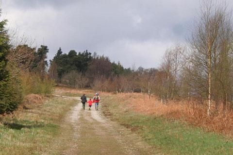 Country walk at Cowhouse Bank