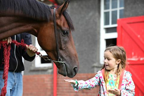 A young visitor gives Royal Bonsai a mint at Highfield Stables at Malton Stables Open Day