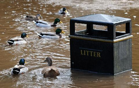 Ducks swim around a litter bin outside Beck Isle Museum in Pickering, but the museum avoided major damage