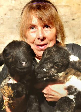 Trish Purnell with the lambs who arrived on Boxing Day