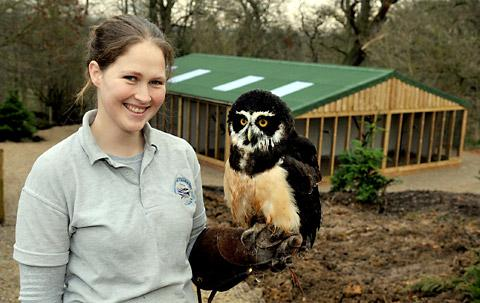 Anabelle De Chazal holds a spectacled moccasin owl from South America at the new bird of prey centre at Duncombe Park Helmsley