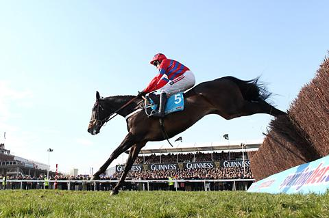 Ridden by Barry Geraghty, Sprinter Sacre jumps the last on the way to victory in the Queen Mother Champion Chase