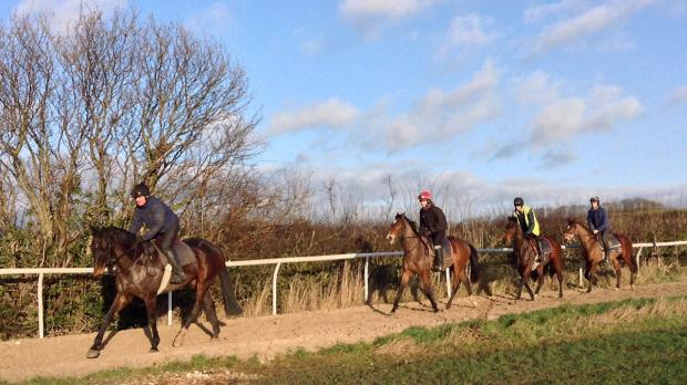 Gazette & Herald: Trainer-in-waiting  Mark Walford's horses on the gallops near the family's Sheriff Hutton yard