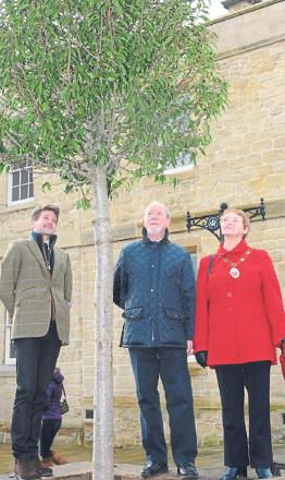 From left, Tobias Burckhardt, surveyor for the Fitzwilliam Estate, Paul Prichard, president of the Malton and Norton Rotary Club, and Malton mayor Joan Lawrence plant one of the trees