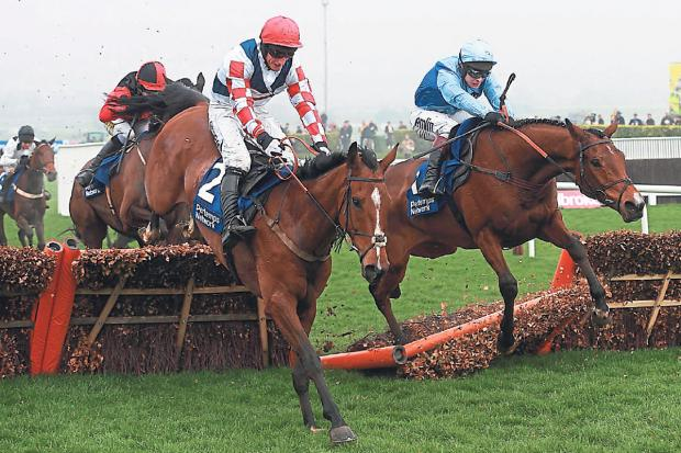 Trustan Times, pictured left in red and black, tracks the leaders before finishing fourth in the Pertemps Network Final at the Cheltenham Festival