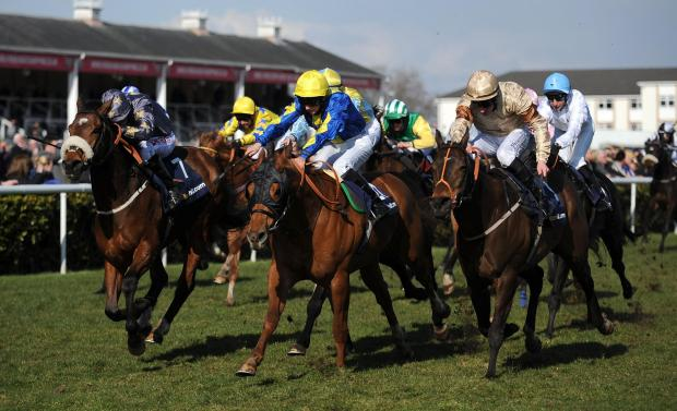 GLOBAL GLORY BID: Brian Ellison's Global Village is pictured, right, finishing second to Levitate in the 2013 William Hill Lincoln at Doncaster. Global Village is part of a strong team from the Norton yard aiming for Lincoln glory this year
