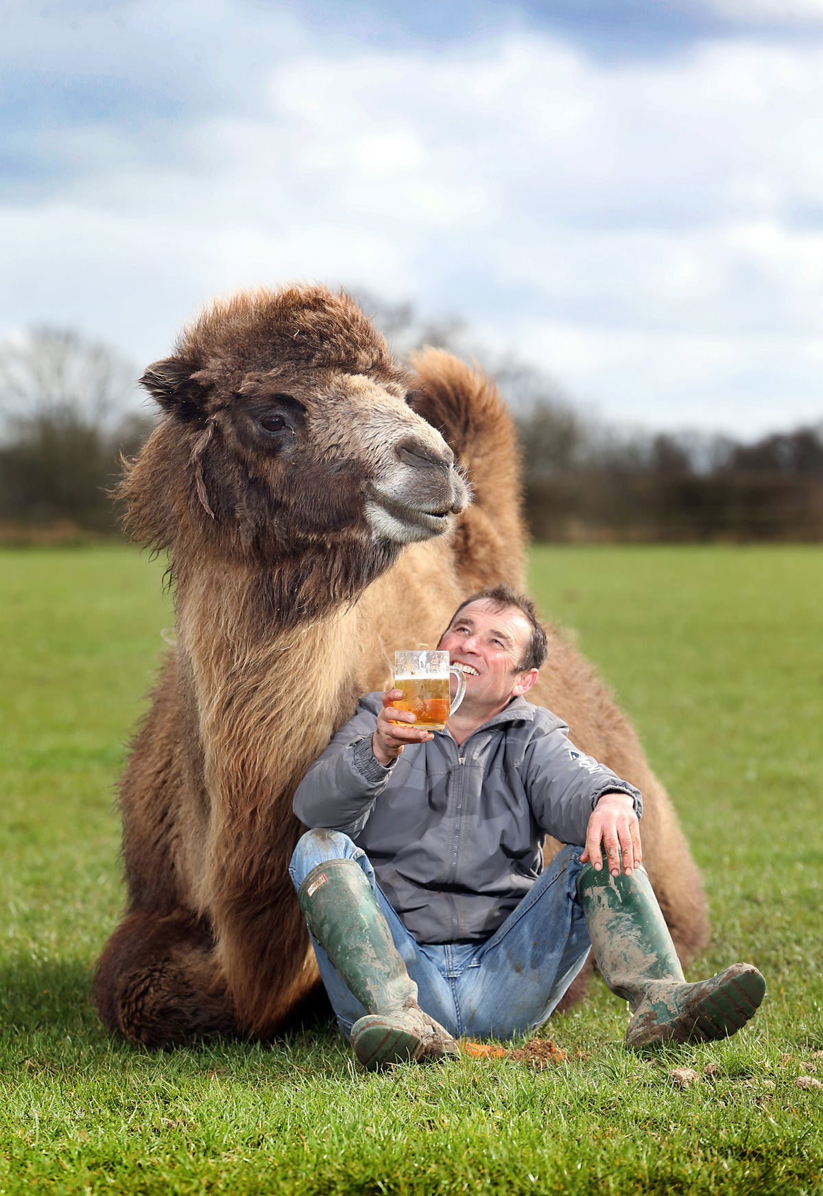 North Yorkshire family seeking new home with space for their beer-loving camel