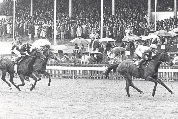 Gazette & Herald: Mrs McArdy, trained by Mick Easterby and ridden by leading Northern jockey Edward Hide from Huttons Ambo, wins the 1,000 Guineas 37 years ago - the last time a Ryedale filly won this Classic
