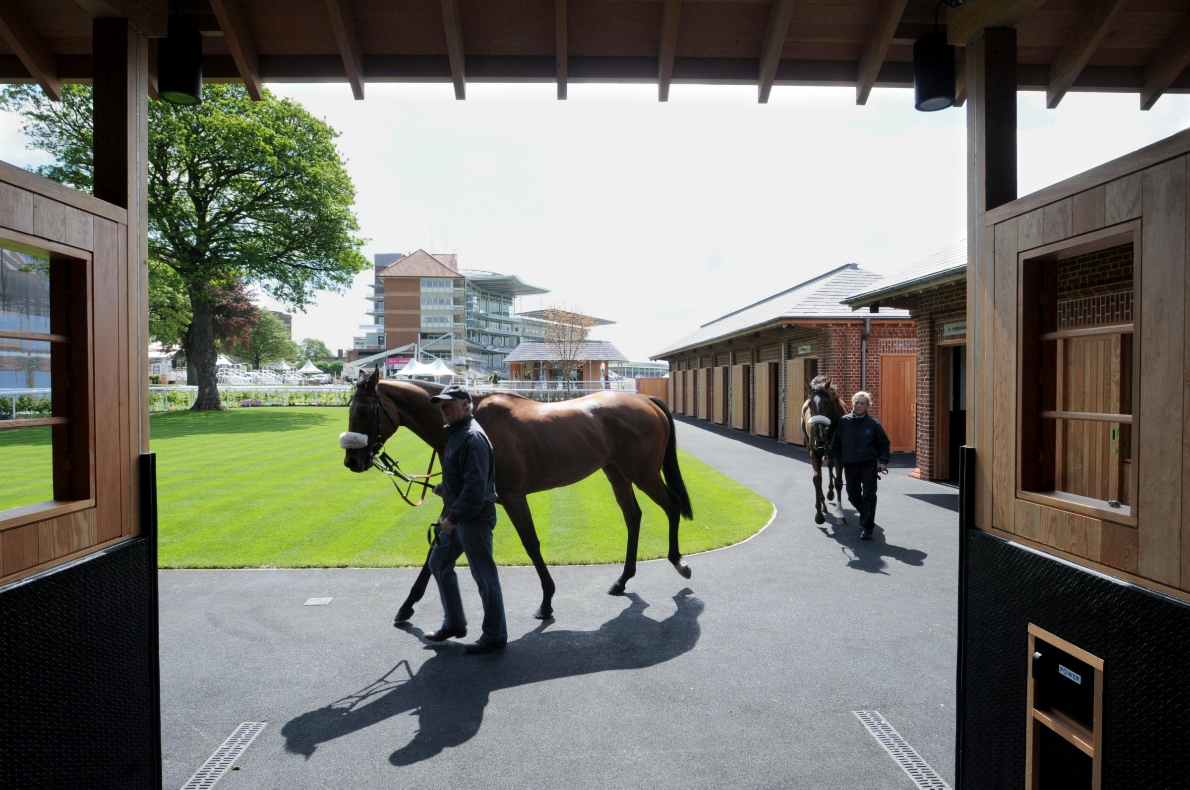 Horses trained by Richard Fahey sample the new pre-parade ring at York Racecourse.   Picture: Mike Tipping