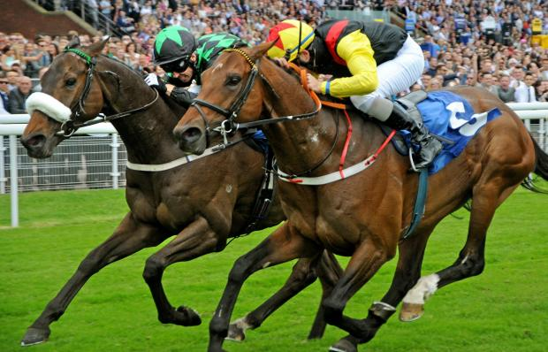 Gazette & Herald: Clever Cookie, left, and Ralston Road can't be separated as they dead-heat in the Stowe Family Law LLP Grand Cup at York Racecourse. Picture: David Harrison