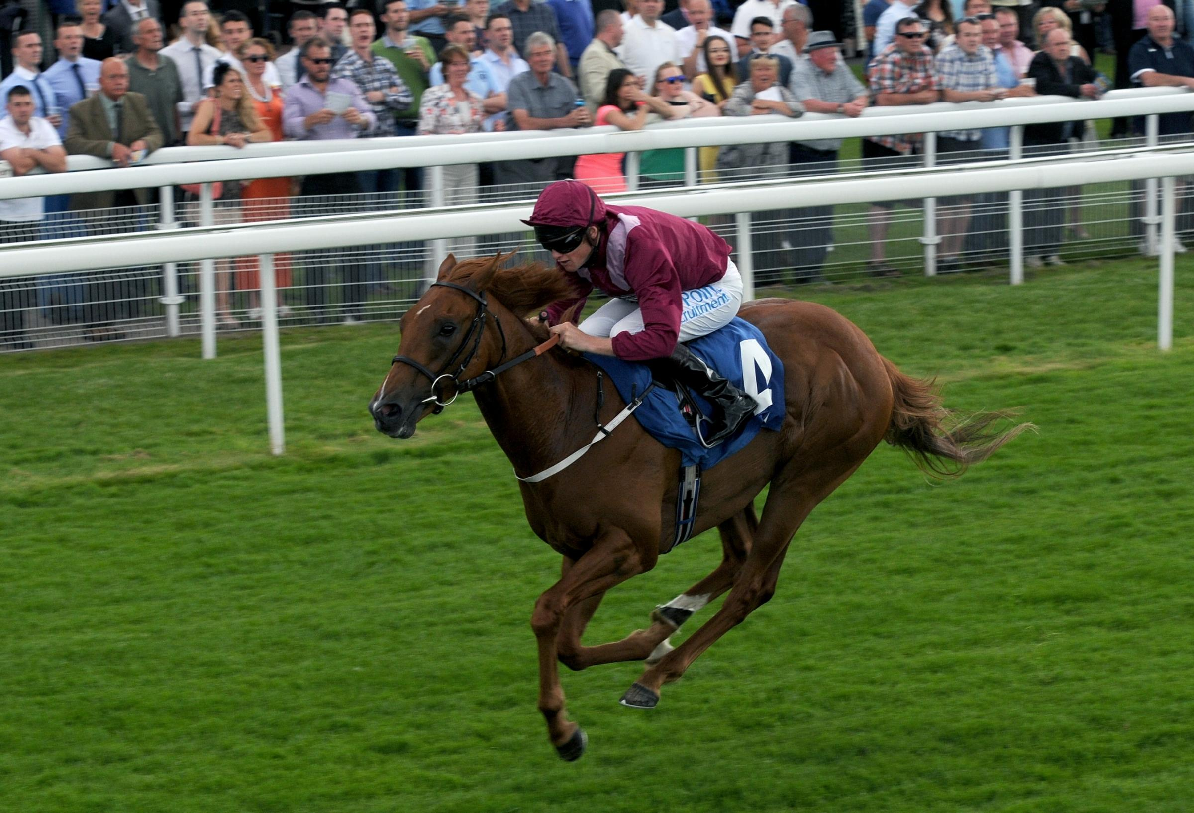 The John Quinn-trained Pres Rapide, ridden by Phillip Makin, wins the Constant Security Irish Stallion Farms EBF Maiden Stakes at York. Picture: Mike Tipping