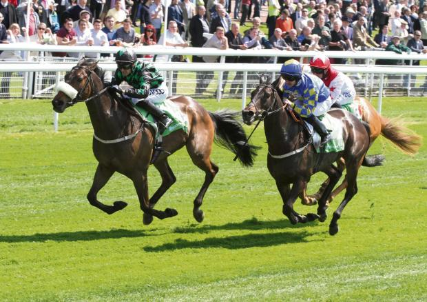 Gazette & Herald: Clever Cookie, trained by Peter Niven and pictured during the first of two Knavesmire victories in May, could be back at York on Saturday for the feature race, the 55th John Smith's Cup
