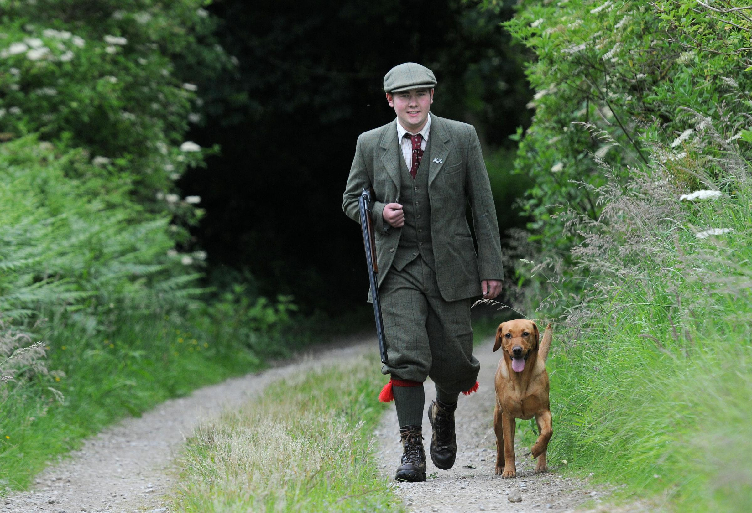 GAME ON: Matthew Harrison walking on the Castle Howard estate with his labrador Izzy