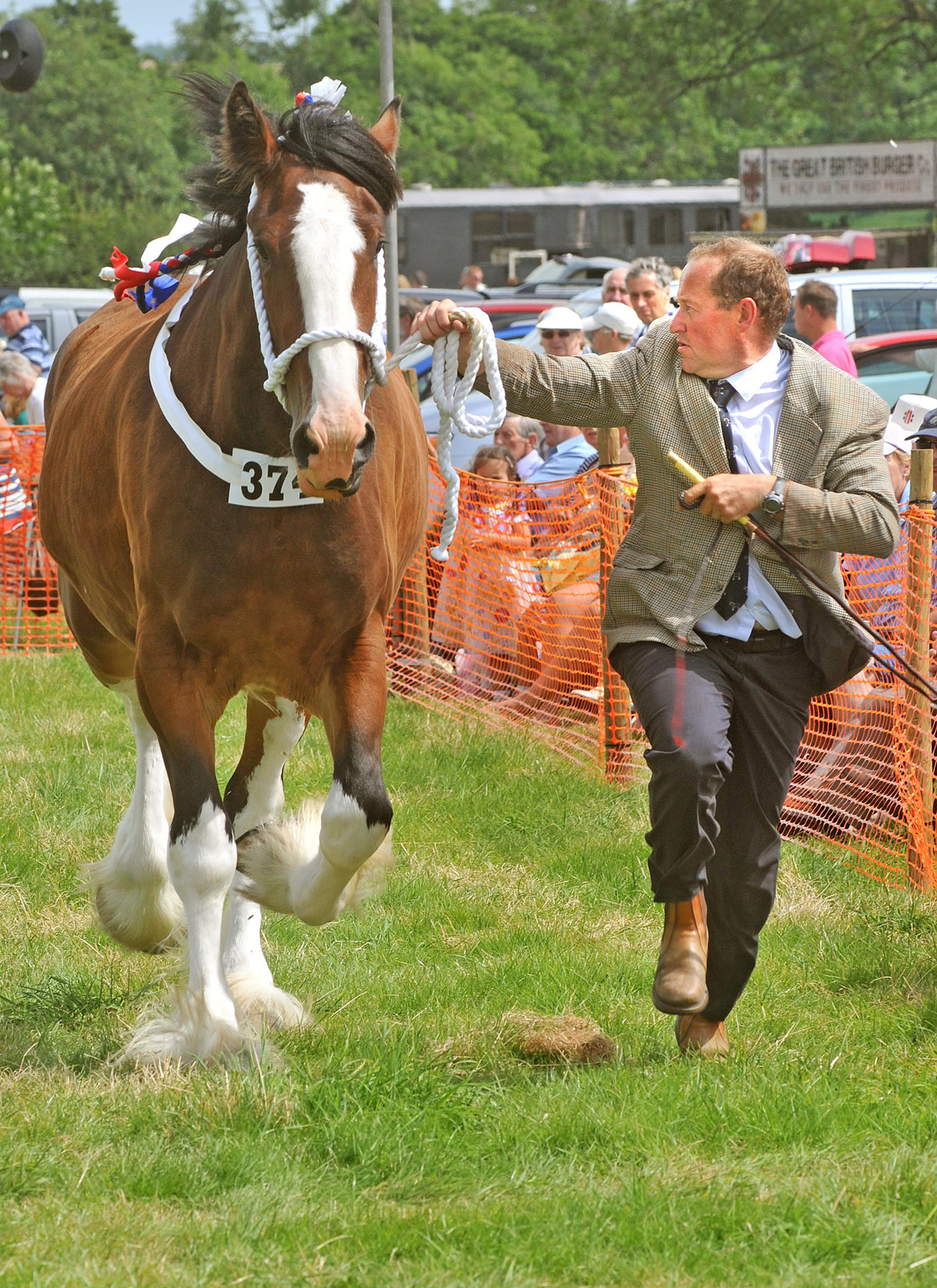Ryedale Show attracts record numbers of entries