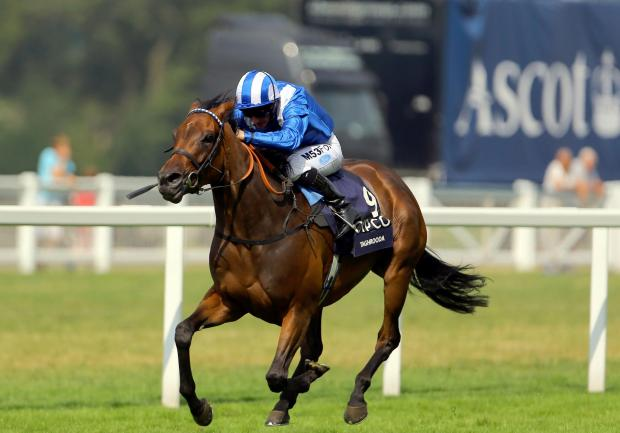 : Ridden by Paul Hanagan, Taghrooda wins the King George VI and Queen Elizabeth Stakes at Ascot last month