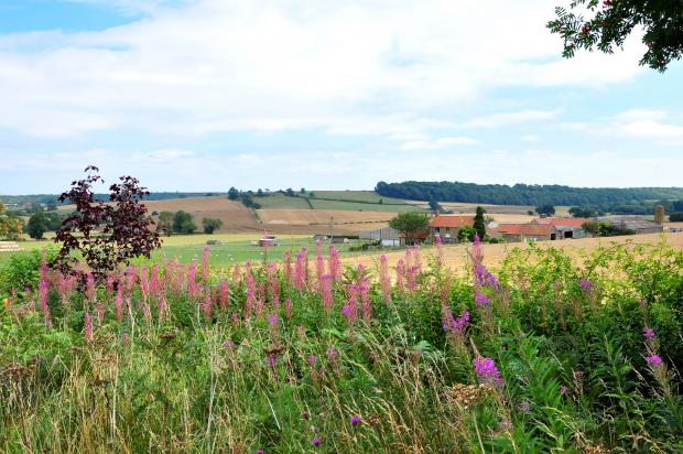 Gazette & Herald: A grand view of the Howardian Hills