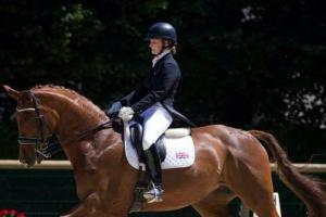 Record entries in dressage