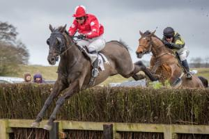 Street Entertainer ridden by jockey Jess Gillam. Picture: Tom Milburn Photography.