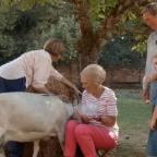 Gazette & Herald: Fans chuckle at Mary Berry's bid to milk a goat
