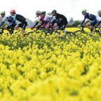 Gazette & Herald: The peloton makes it way through the Yorkshire countryside during last year's Tour de Yorkshire. Picture: Alex Broadway/SWpix.com