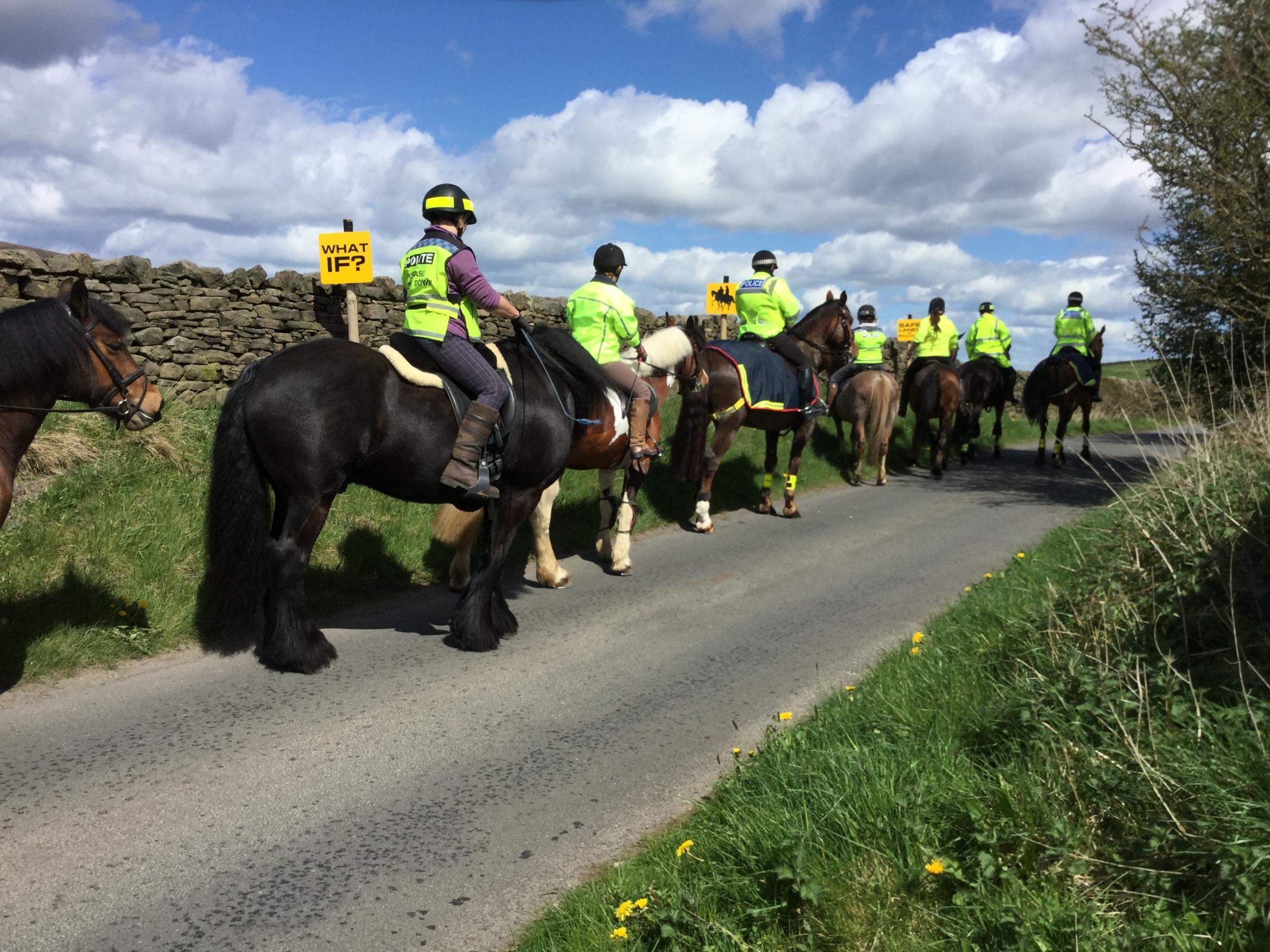 Charity urging changes to speed limits to improve road safety for horse riders
