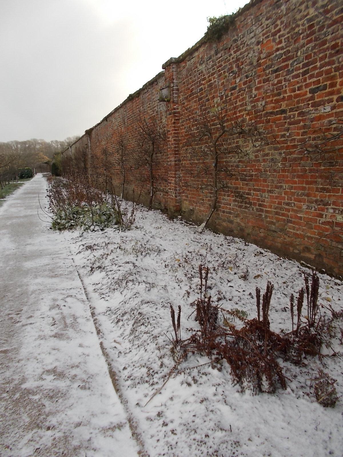 Nice Walled Garden Error Code 5 Image Collection - Brown Nature ...