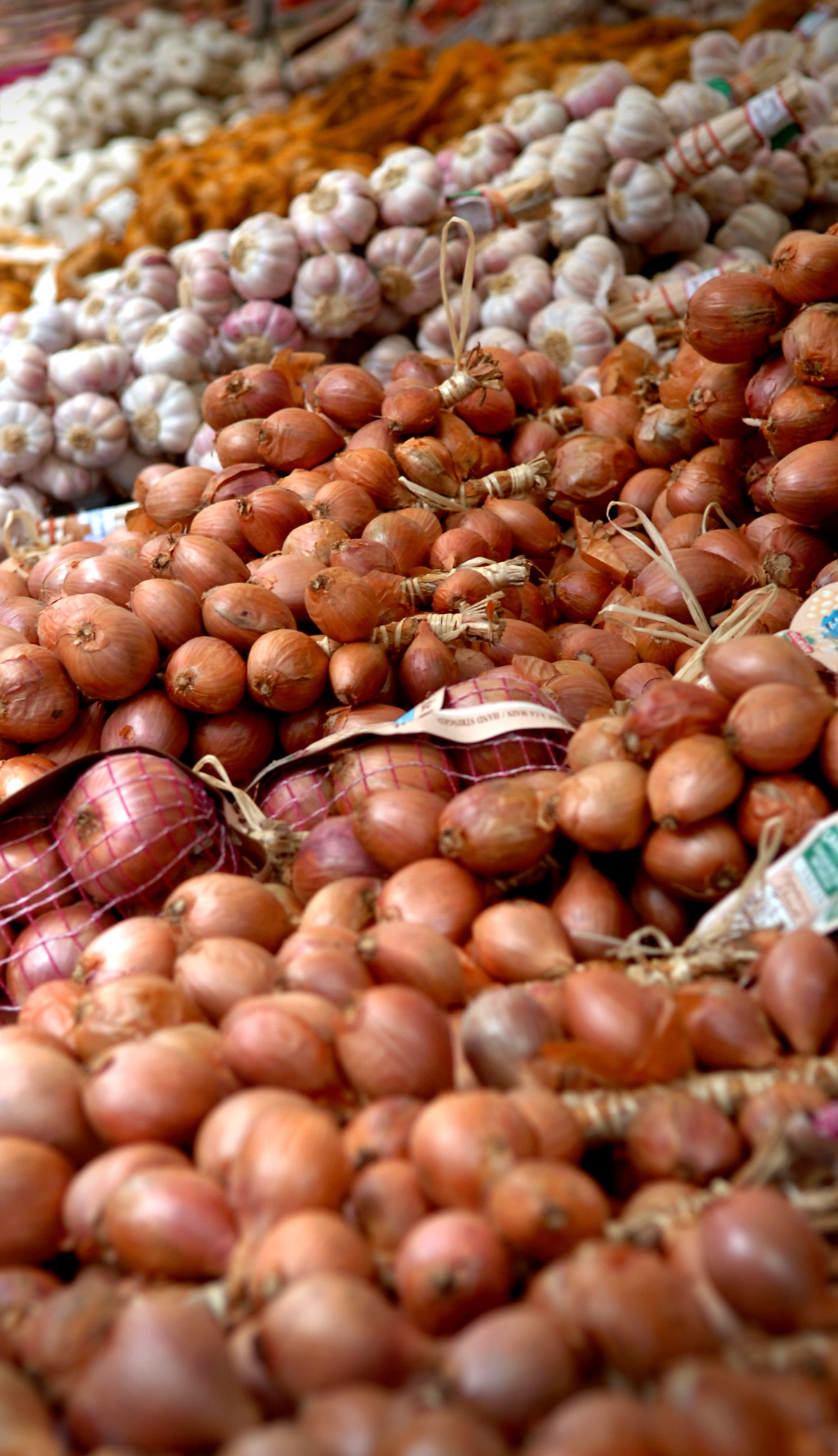 Onions, which like leeks and garlic are members of the allium family, have been renowned for their health-giving properties for centuries