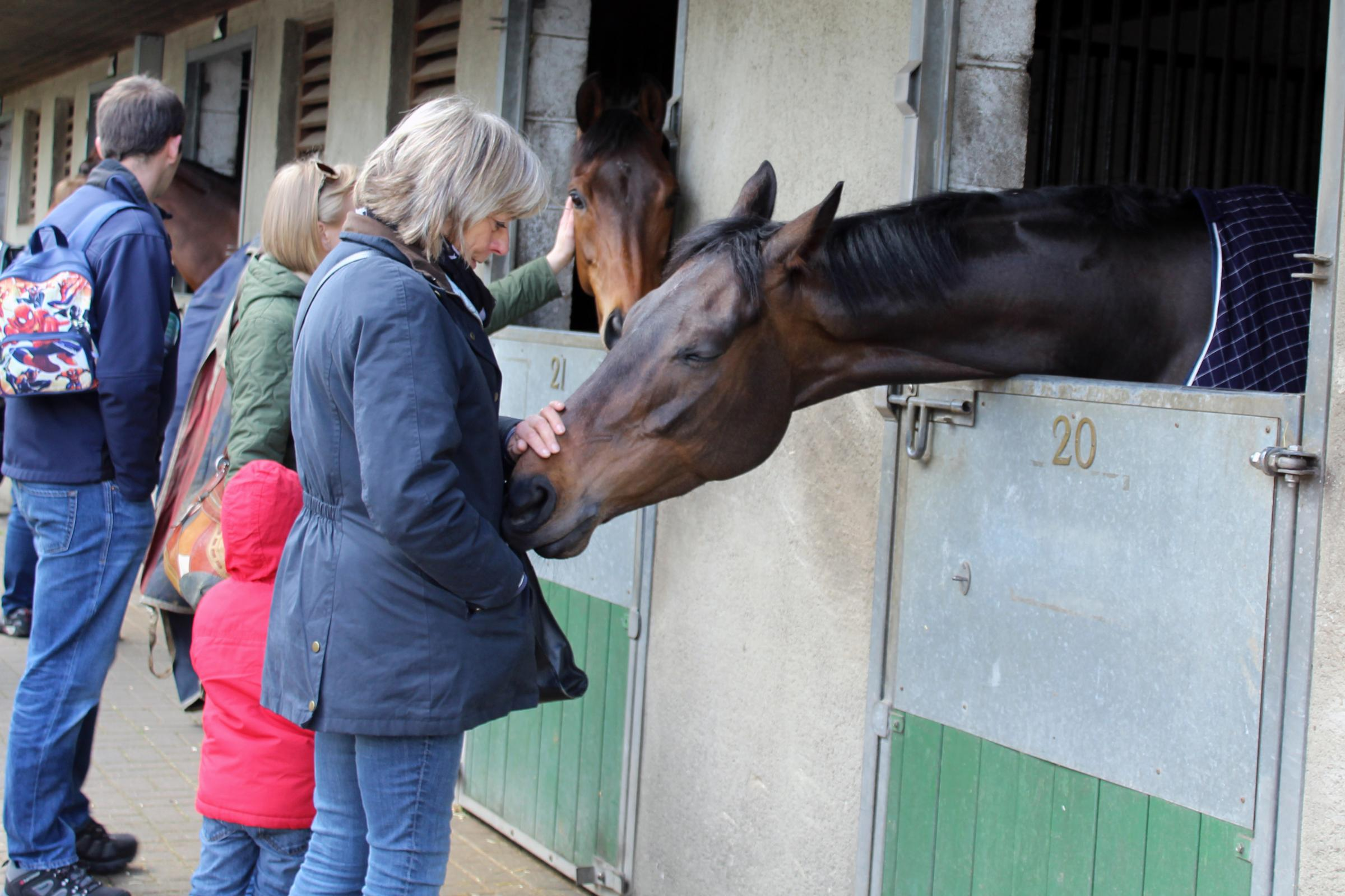 Visitors enjoy a look around Middleham Stables during the open day last year     Picture: Rachel Cawley, Racing Welfare