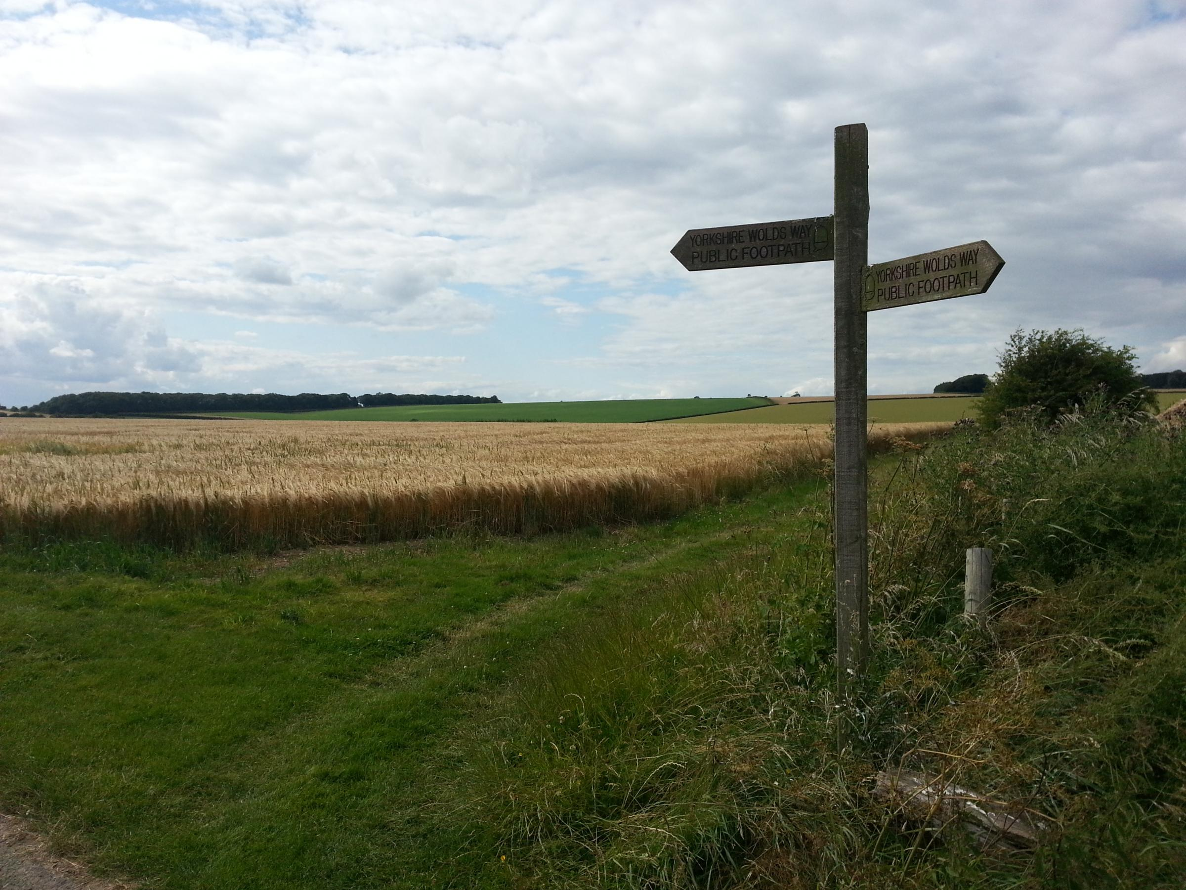 Signpost on the Yorkshire Wolds