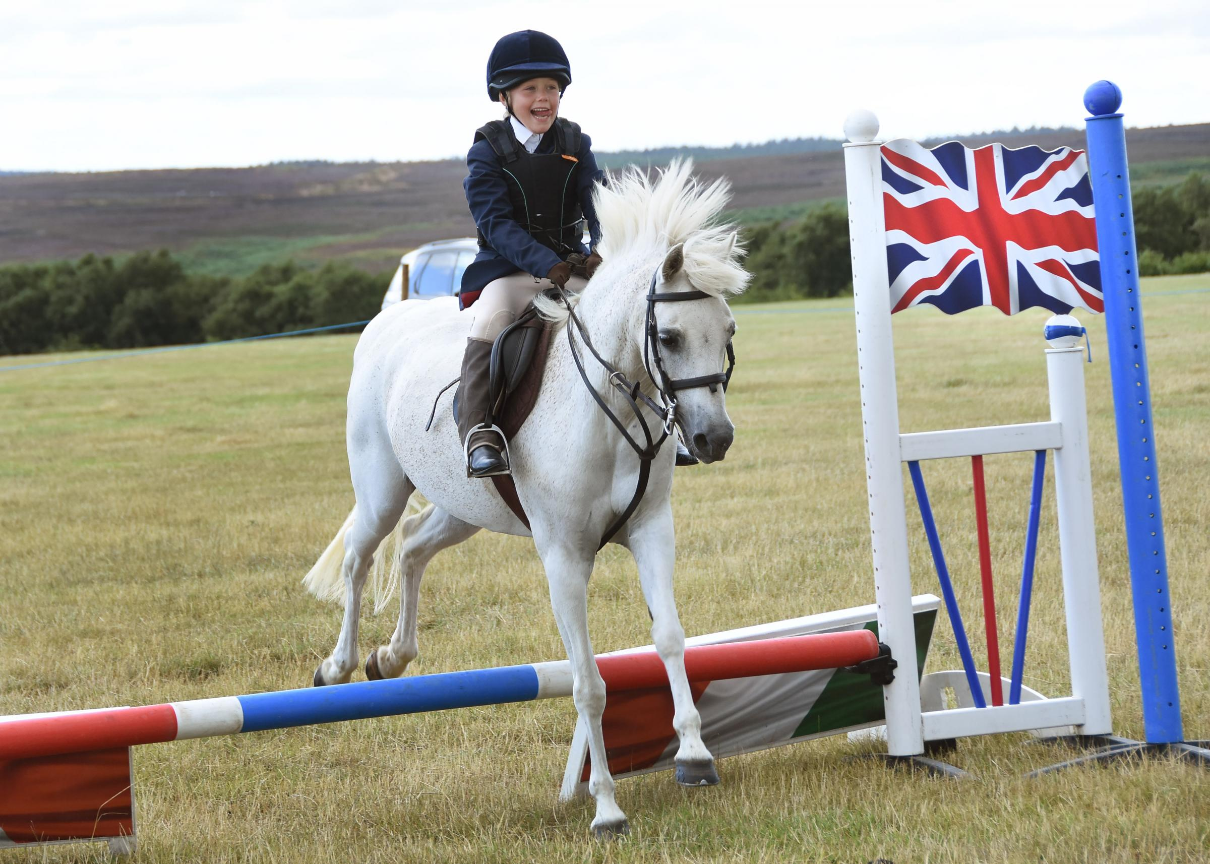Action in one of the equestrian classes at Saltersgate Show                            Picture: David Harrison