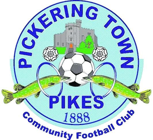 Pickering Town Football Club praised for the way it handled an incident of alleged racial abuse