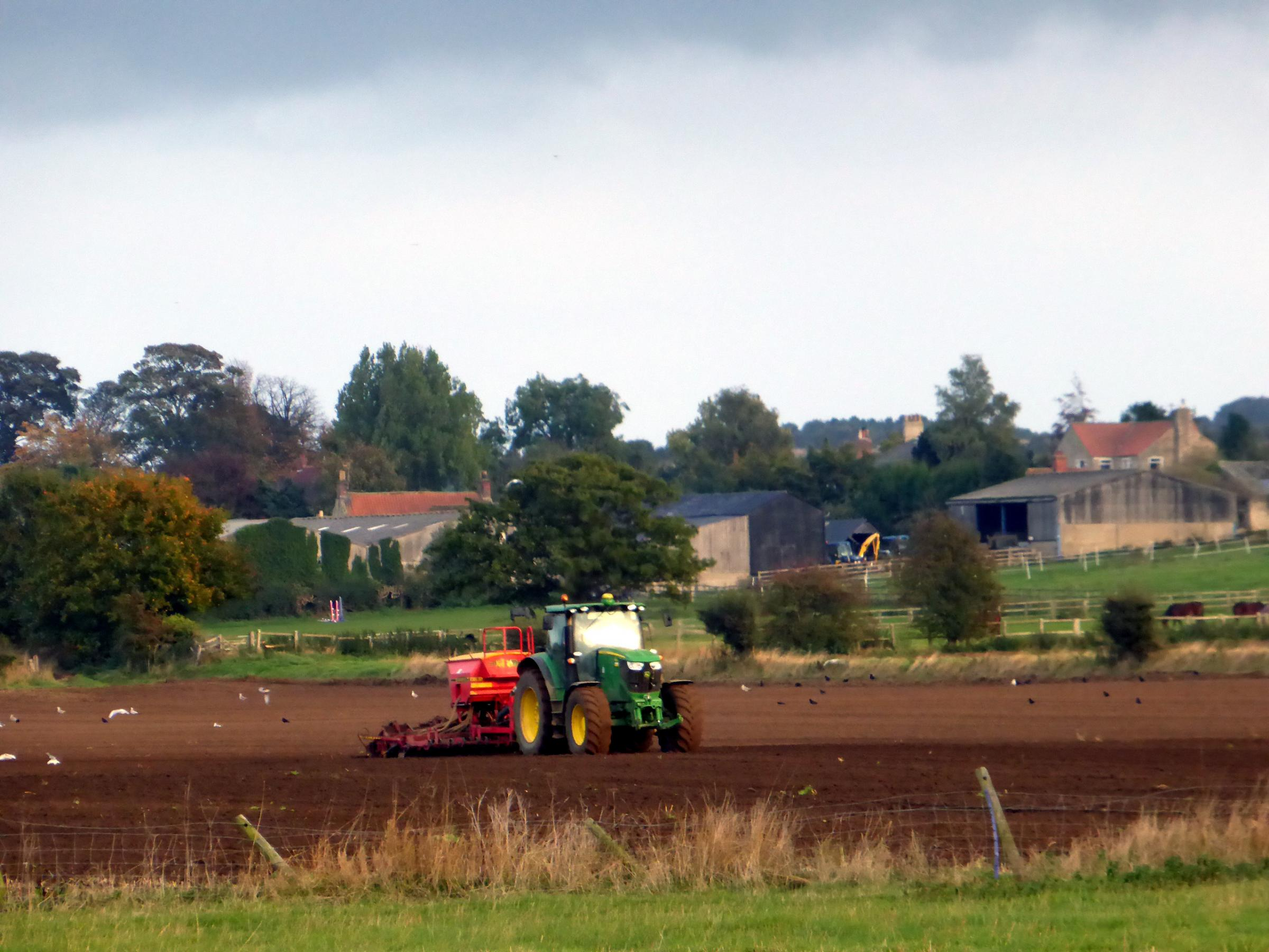 Autumn sowing taken from Fryton towards Slingsby  Picture:  Colin Douthwaite