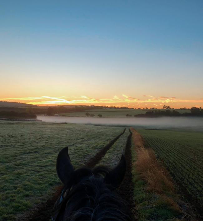 On Langton Wold gallops on a cold morning   Picture: Zoe Hume, Amotherby