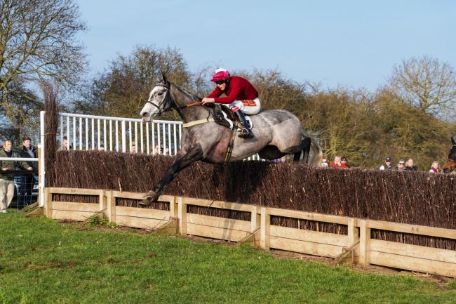 Absainte ridden by Will Easterby. Picture: Tom Milburn Photography