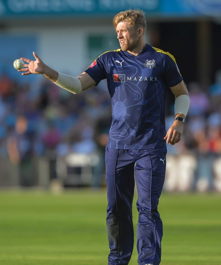 David Willey won't be playing in the IPL this season    Picture: Ray Spencer